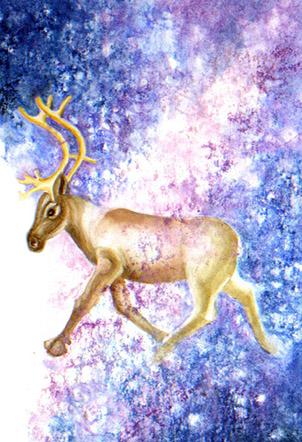 New children's book a tribute to mountain caribou